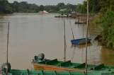 River Kinabatangan